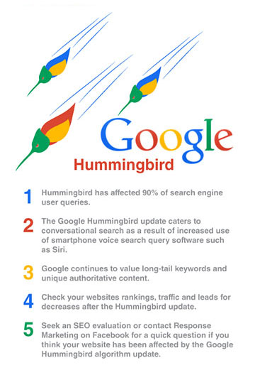google-hummingbird-results